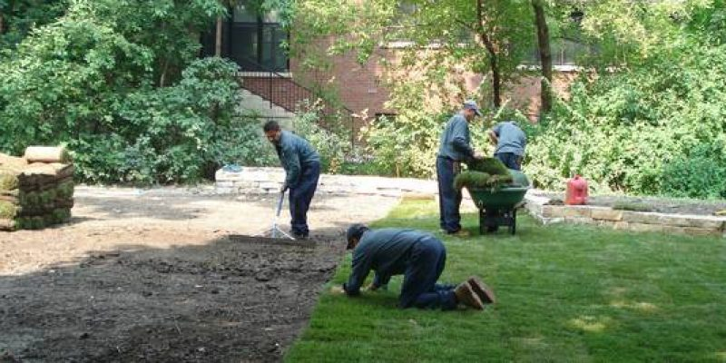 Sod for sale Installation Services $ 2 sq including labor and material (san jose east)