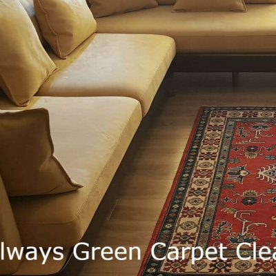 Always Green Carpet Cleaner